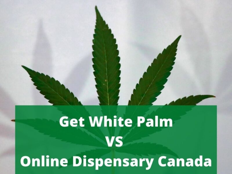 What are the Things to Know About Online Dispensary Canada?