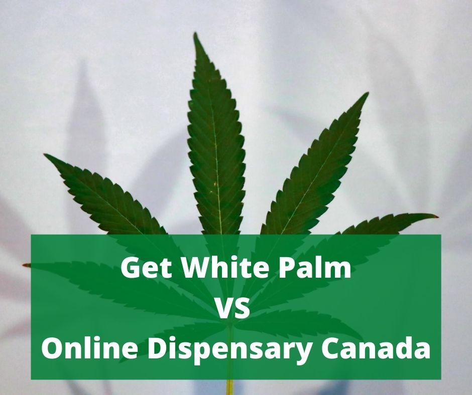 Get White Palm VS Online Dispensary Canada
